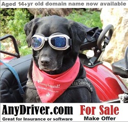 anydriver.com for sale